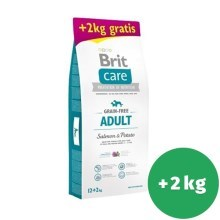 Brit Care Dog Grain-free Adult Salmon & Potato 12+2 kg ZADARMO
